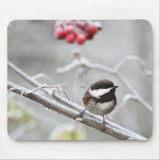 Chickadee and Red Berries in Winter Mouse Pad
