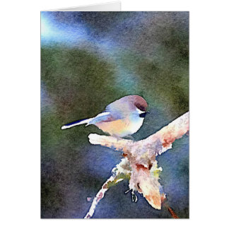 Chickadee at Twilight Card