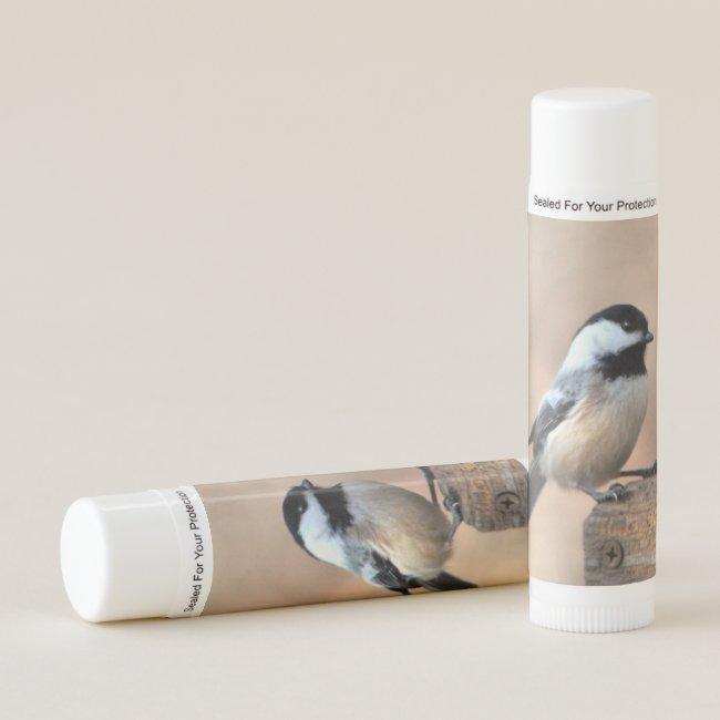 Chickadee Bird Golden Light Animal Lip Balm