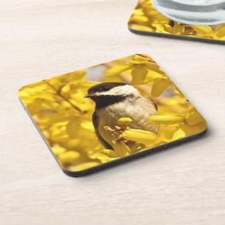 Chickadee Bird in Yellow Flowers Coaster Set
