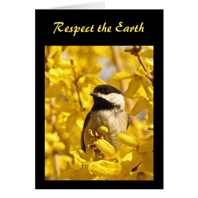 Chickadee Bird in Yellow Flowers Earth Day
