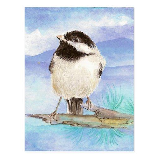 Chickadee, Bird, Wildlife, Nature,  Postcard