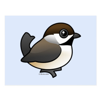 Chickadee boreal postales