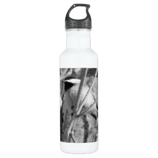 Chickadee BW 01 Stainless Steel Water Bottle