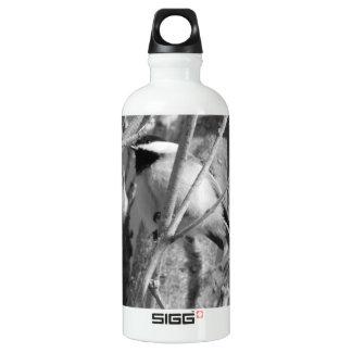 Chickadee BW 01 Water Bottle