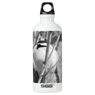 Chickadee BW 02 Water Bottle