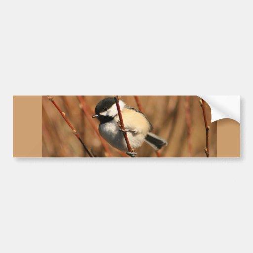 Chickadee capsulado negro etiqueta de parachoque