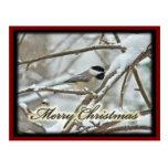 Chickadee capsulado negro del navidad en nieve postales