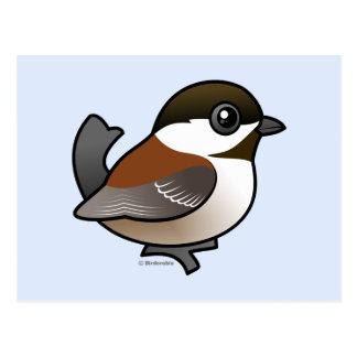 Chickadee Castaña-apoyado Tarjetas Postales