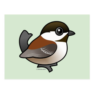Chickadee Castaña-apoyado Postales