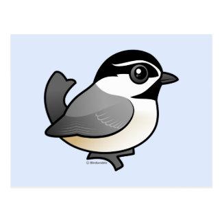 Chickadee de la montaña tarjetas postales