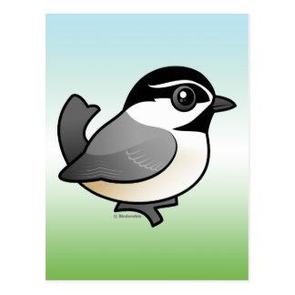 Chickadee de la montaña tarjeta postal