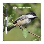 Chickadee de Massachusetts Pizarra