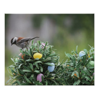 chickadee en el poster del árbol del huevo de Pasc