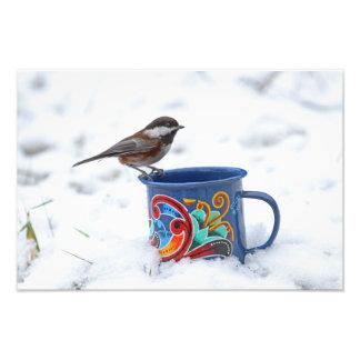 Chickadee en la nieve impresion fotografica
