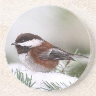 Chickadee en la nieve posavasos manualidades