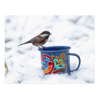 Chickadee en la nieve tarjetas postales