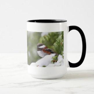 Chickadee en nieve en un árbol de cedro taza