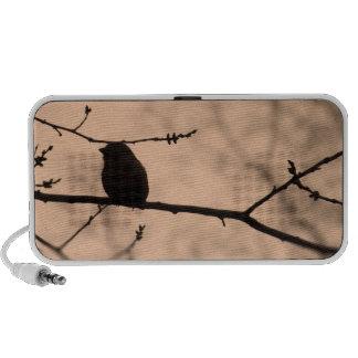 Chickadee en rama en la silueta crepuscular altavoz de viajar
