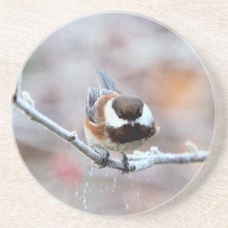 Chickadee en una rama de árbol escarchada posavasos personalizados