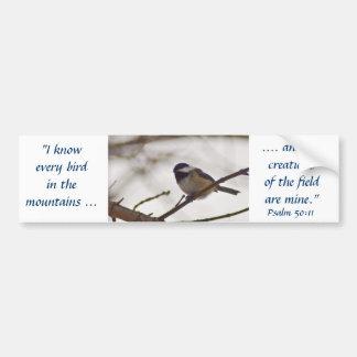 Chickadee en una ramita etiqueta de parachoque