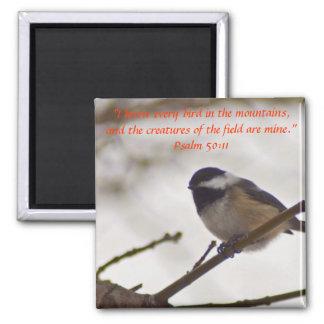 Chickadee en una ramita imán cuadrado