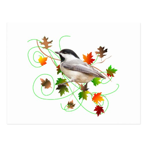 Chickadee & Fall Leaves Postcard