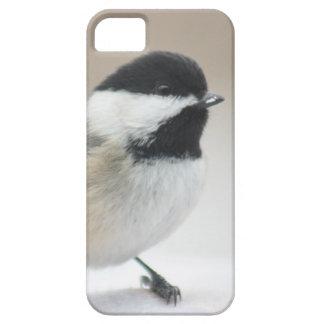 Chickadee Funda Para iPhone 5 Barely There