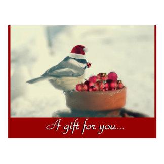 Chickadee Holiday Gift Certificate Postcard