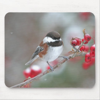 Chickadee in Falling Snow with Red Berries Mouse Pad