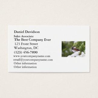 Chickadee in Snow on a Cedar Tree Business Card