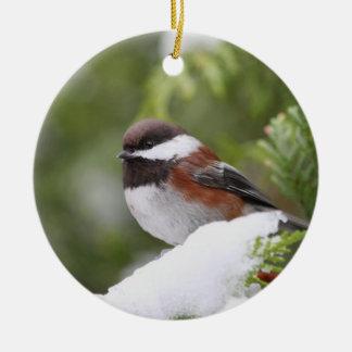 Chickadee in Snow on a Cedar Tree Ceramic Ornament