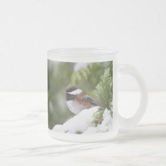 Chickadee in Snow on a Cedar Tree Frosted Glass Coffee Mug