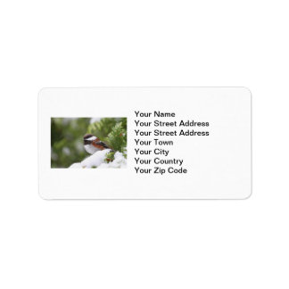 Chickadee in Snow on a Cedar Tree Label