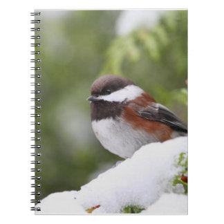 Chickadee in Snow on a Cedar Tree Spiral Notebook