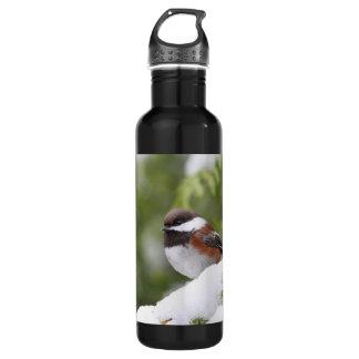 Chickadee in Snow on a Cedar Tree Stainless Steel Water Bottle