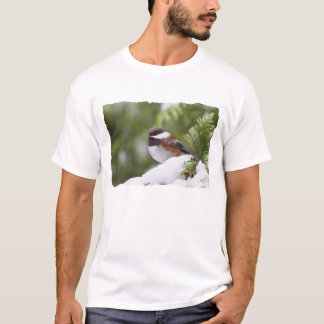 Chickadee in Snow on a Cedar Tree T-Shirt