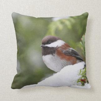 Chickadee in Snow on a Cedar Tree Throw Pillow