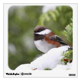Chickadee in Snow on a Cedar Tree Wall Decal