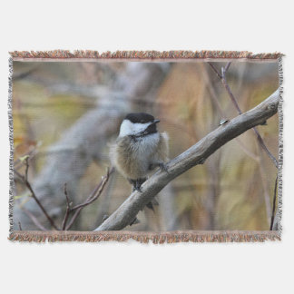 Chickadee in the forest throw