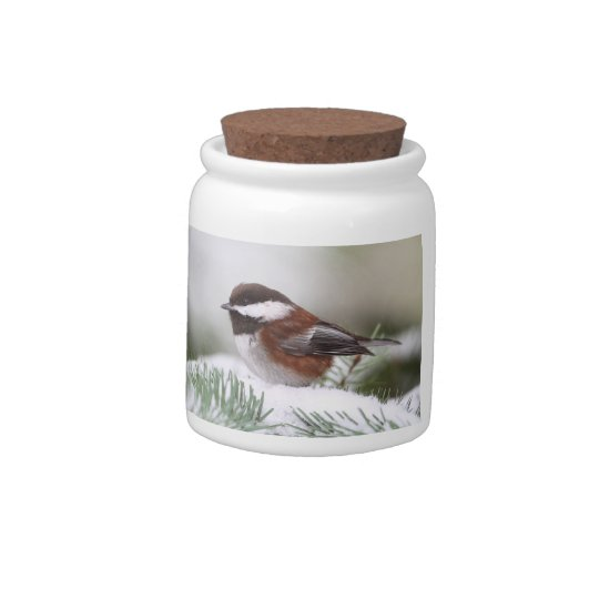 Chickadee in the Snow Candy Jars