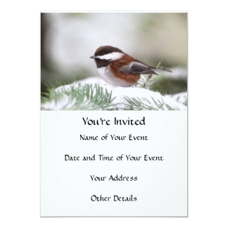 Chickadee in the Snow Card