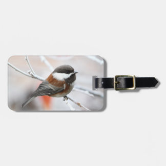 Chickadee in Winter Luggage Tags