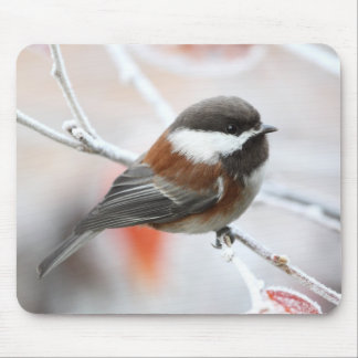 Chickadee in Winter Mouse Pads