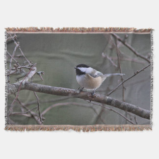 Chickadee in winter throw