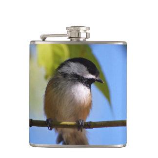 Chickadee lindo en una fotografía de la rama