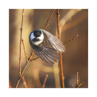 Chickadee Missile Square Canvas Print
