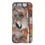 Chickadee Negro-capsulado adulto en la nieve, Funda Para iPhone 6 Barely There