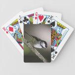 Chickadee Negro-capsulado Barajas De Cartas
