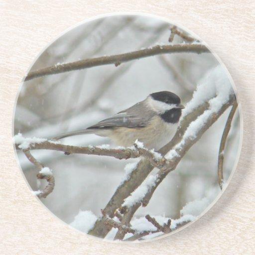 Chickadee Negro-Capsulado en tormenta de la nieve Posavasos Manualidades